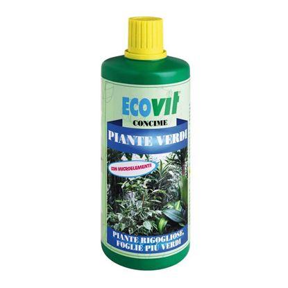 Immagine di Concime Ecovit, liquido, piante verdi, nutrimento per tutte le piante verdi in genere, 1 kg
