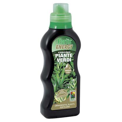 Immagine di Energy piante verdi 500 gr