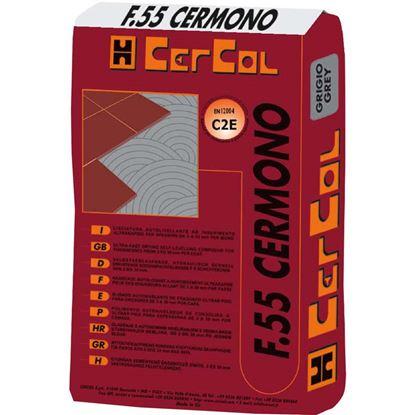 Immagine di Colla, F55, scivolamento verticale nullo, per gres porcellanato, da interni ed esterni, 25 kg, colore bianco