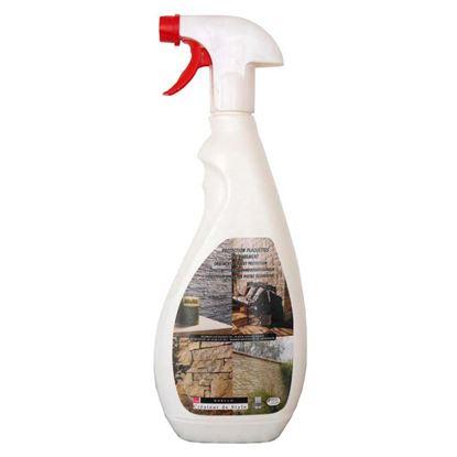 Immagine di Protettivo Spray per placchette, 0,75 lt